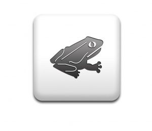 Boton cuadrado blanco rana